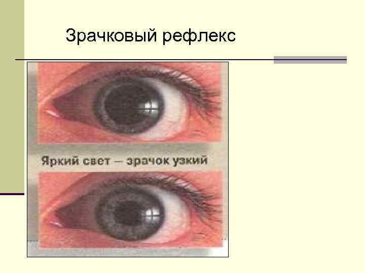 Зрачковый рефлекс