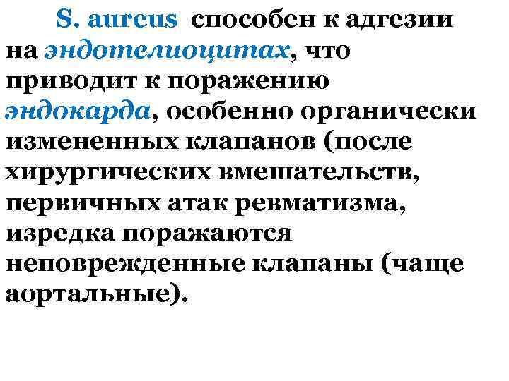 S. aureus способен к адгезии на эндотелиоцитах, что приводит к поражению эндокарда, особенно органически