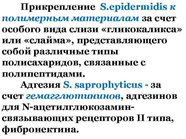 Прикрепление S. epidermidis к полимерным материалам за счет особого вида слизи «гликокаликса» или «слайма»