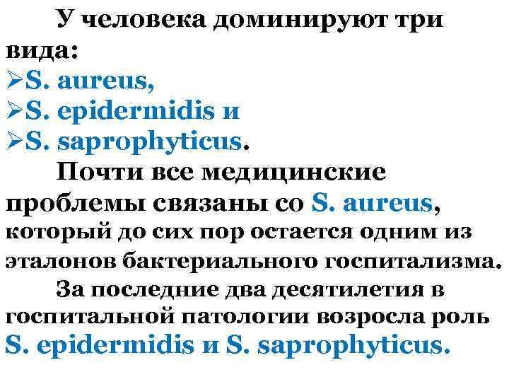 У человека доминируют три вида: ØS. aureus, ØS. epidermidis и ØS. saprophyticus. Почти все