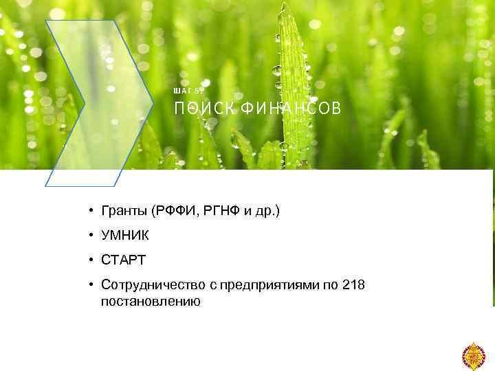 ШАГ 5: ПОИСК ФИНАНСОВ • Гранты (РФФИ, РГНФ и др. ) • УМНИК •