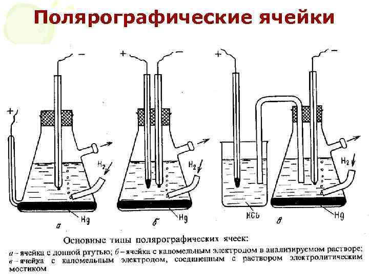 Полярографические ячейки МККОС. Л. К. № 10. Попова Людмила Федоровна 41