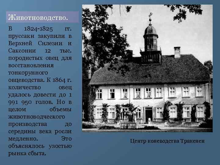 Животноводство. В 1824 1825 гг. пруссаки закупили в Верхней Силезии и Саксонии 12 тыс.