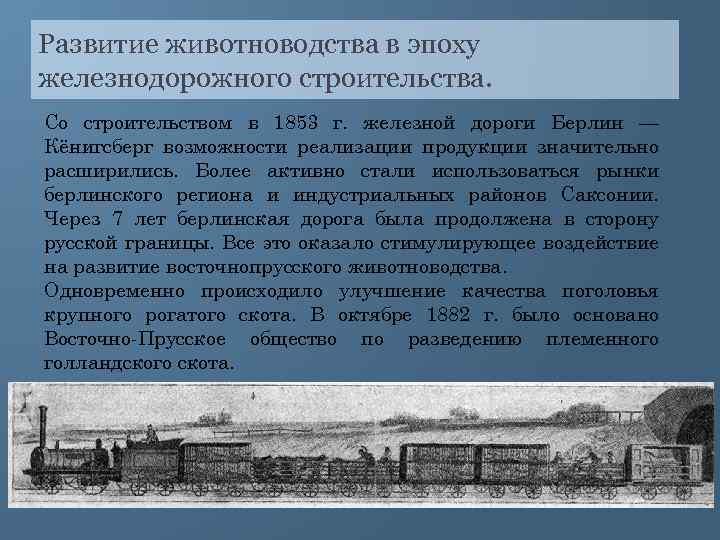 Развитие животноводства в эпоху железнодорожного строительства. Со строительством в 1853 г. железной дороги Берлин