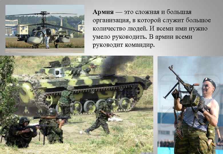 Армия — это сложная и большая организация, в которой служит большое количество людей. И