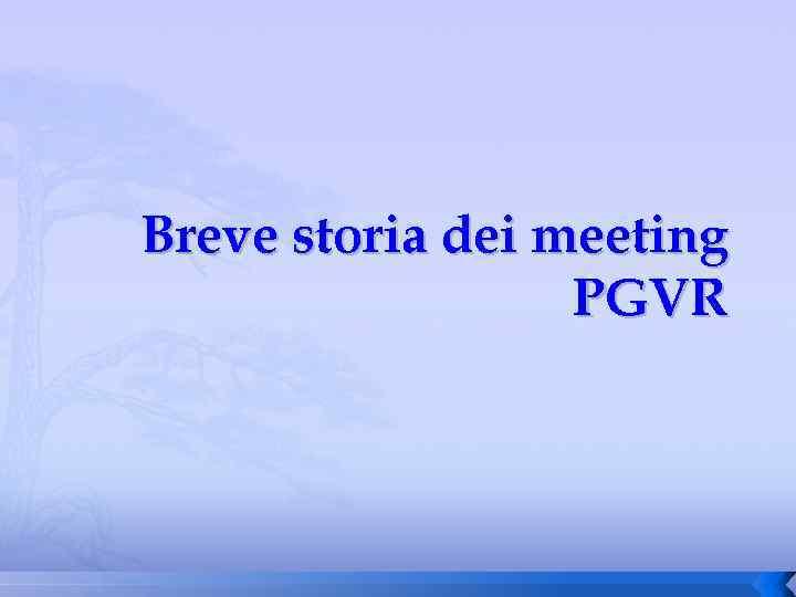 Breve storia dei meeting PGVR