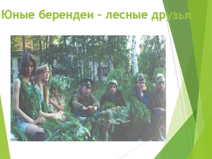 Юные берендеи – лесные друзья