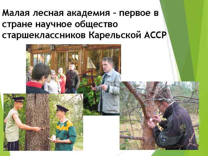 Малая лесная академия – первое в стране научное общество старшеклассников Карельской АССР