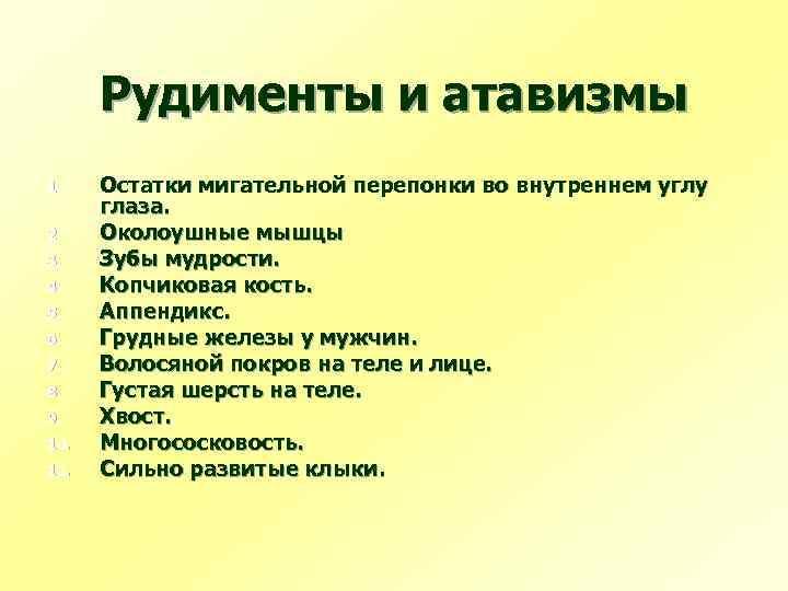 Рудименты и атавизмы 1. 2. 3. 4. 5. 6. 7. 8. 9. 10. 11.