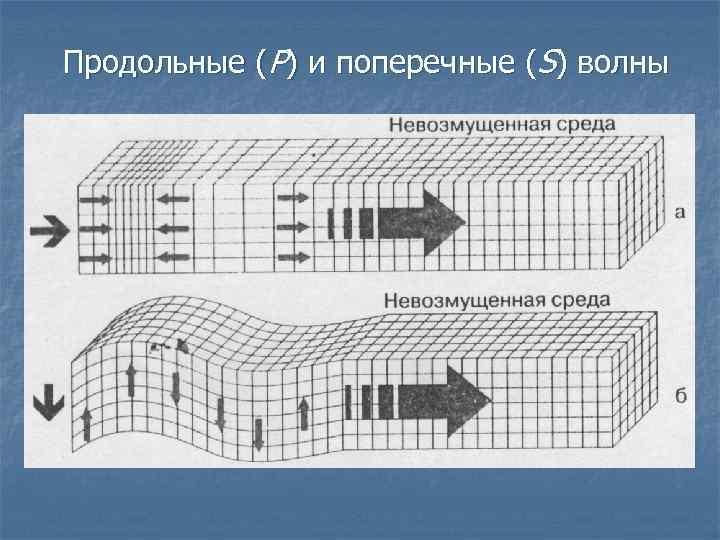 Продольные (Р) и поперечные (S) волны