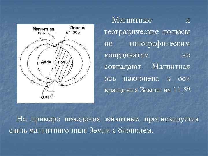 Магнитные и географические полюсы по топографическим координатам не совпадают. Магнитная ось наклонена к оси
