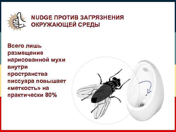 NUDGE ПРОТИВ ЗАГРЯЗНЕНИЯ ОКРУЖАЮЩЕЙ СРЕДЫ Всего лишь размещение нарисованной мухи внутри пространства писсуара повышает