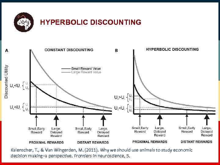 HYPERBOLIC DISCOUNTING Kalenscher, T. , & Van Wingerden, M. (2011). Why we should use