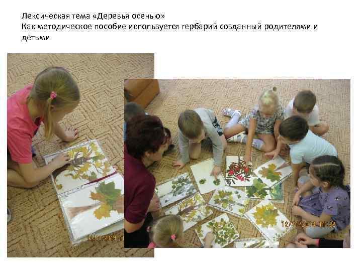 Лексическая тема «Деревья осенью» Как методическое пособие используется гербарий созданный родителями и детьми