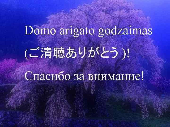 Спасибо за поздравления по японски