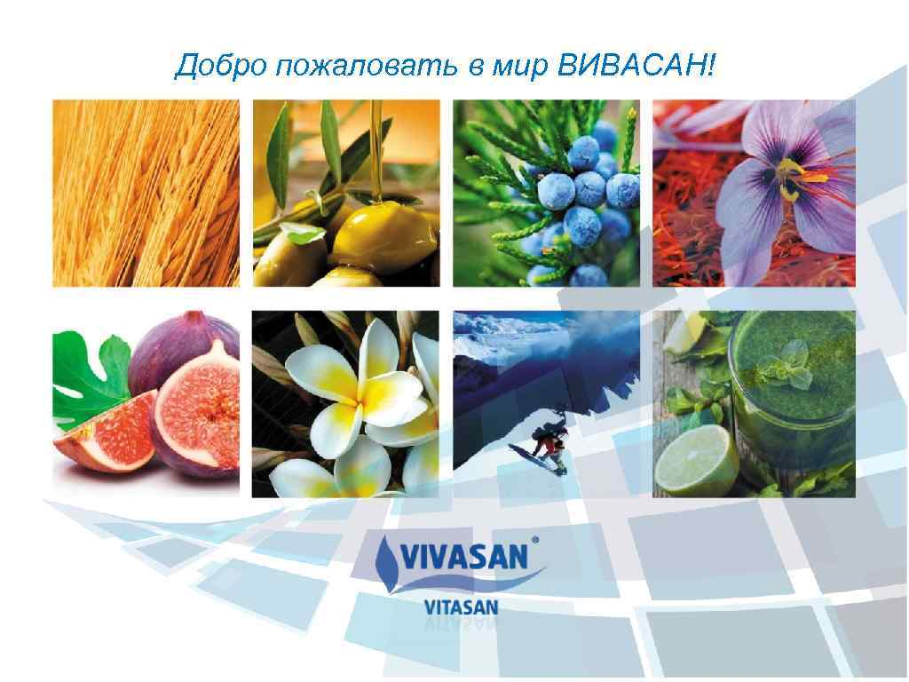 Добро пожаловать в мир ВИВАСАН!