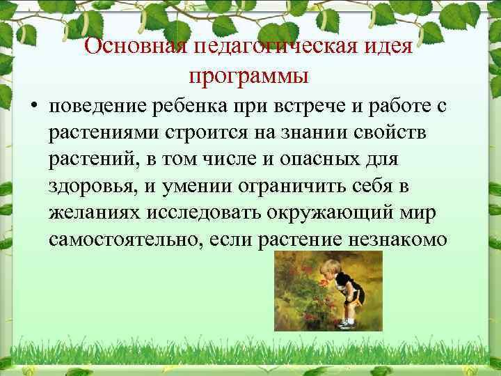 Основная педагогическая идея программы • поведение ребенка при встрече и работе с растениями строится