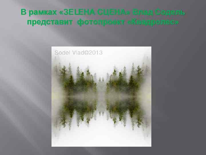 В рамках «ЗЕLЕНА СЦЕНА» Влад Содель представит фотопроект «Квадролес»