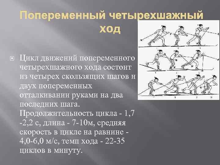 Попеременный четырехшажный xoд Цикл движений попеременного четырехшажного хода состоит из четырех скользящих шагов и