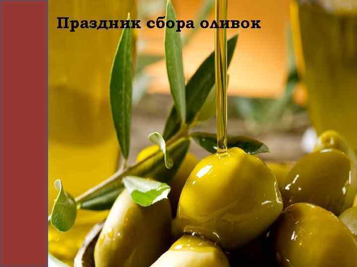 Праздник сбора оливок