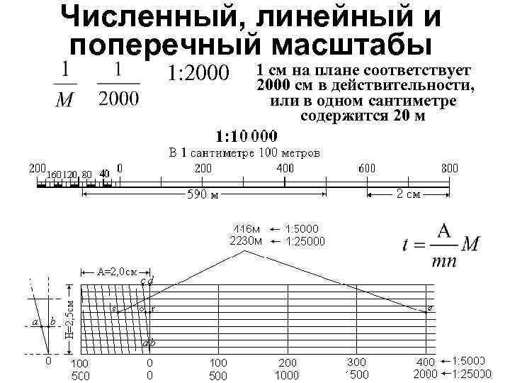 Численный, линейный и поперечный масштабы 1: 2000 1 см на плане соответствует 2000 см