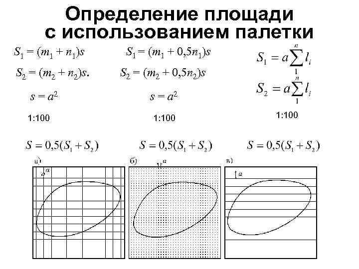 Определение площади с использованием палетки S 1 = (m 1 + n 1)s S