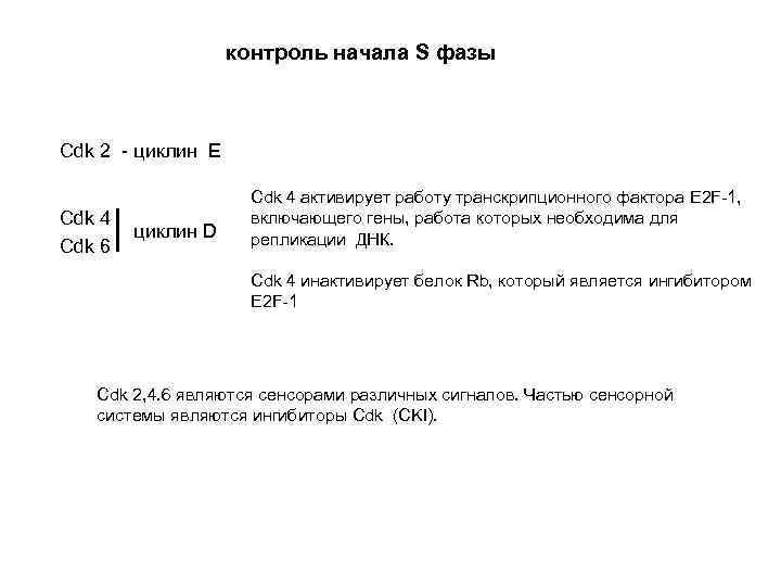 контроль начала S фазы Cdk 2 - циклин E Сdk 4 Cdk 6 циклин