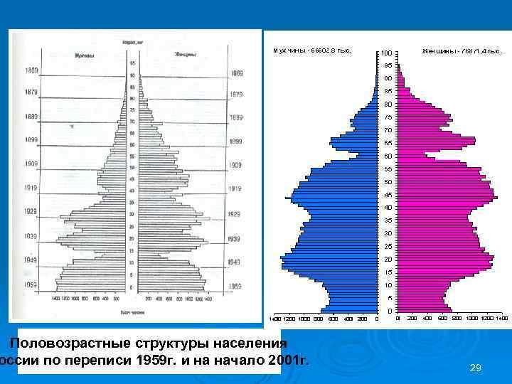 Половозрастные структуры населения оссии по переписи 1959 г. и на начало 2001 г. 29