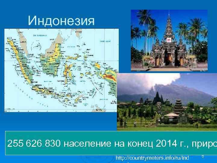 Индонезия 255 626 830 население на конец 2014 г. , приро http: //countrymeters. info/ru/Ind