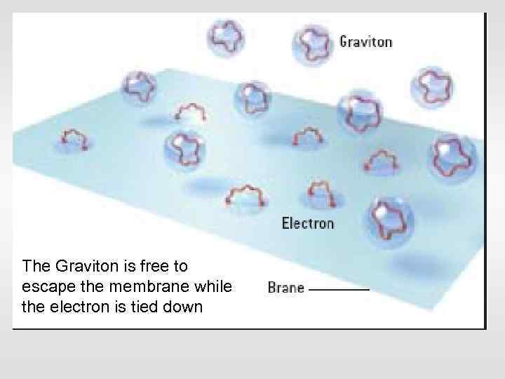 The Graviton is free to escape the membrane while the electron is tied down
