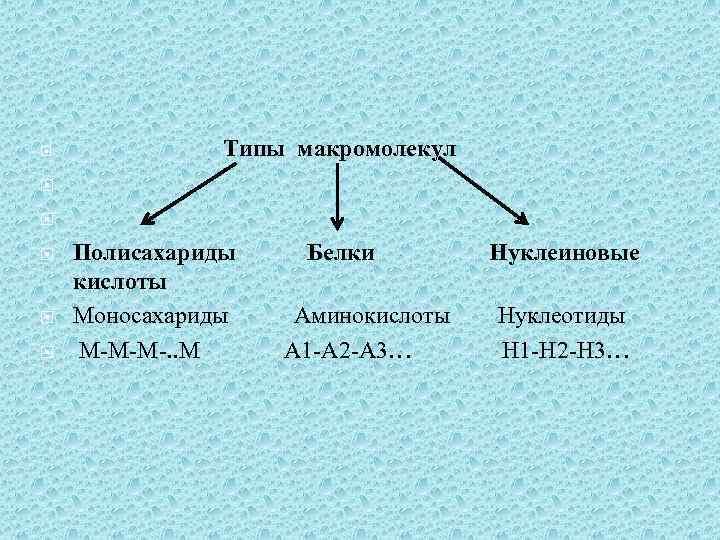 Типы макромолекул Полисахариды Белки Нуклеиновые кислоты Моносахариды Аминокислоты Нуклеотиды М-М-М-. . М А