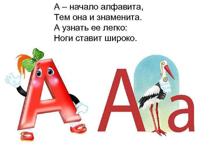 А – начало алфавита, Тем она и знаменита. А узнать ее легко: Ноги ставит