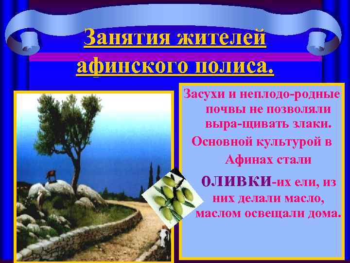 Занятия жителей афинского полиса. Засухи и неплодо-родные почвы не позволяли выра-щивать злаки. Основной культурой