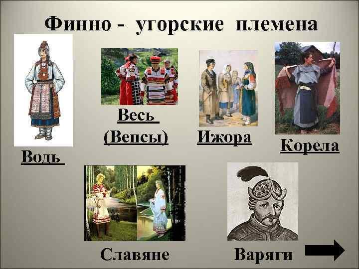 Финно - угорские племена Весь (Вепсы) Водь Славяне Ижора Корела Варяги