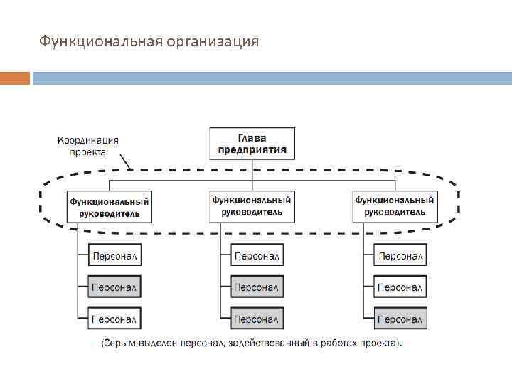 Функциональная организация