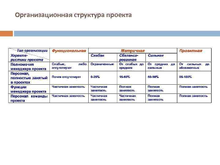 Организационная структура проекта