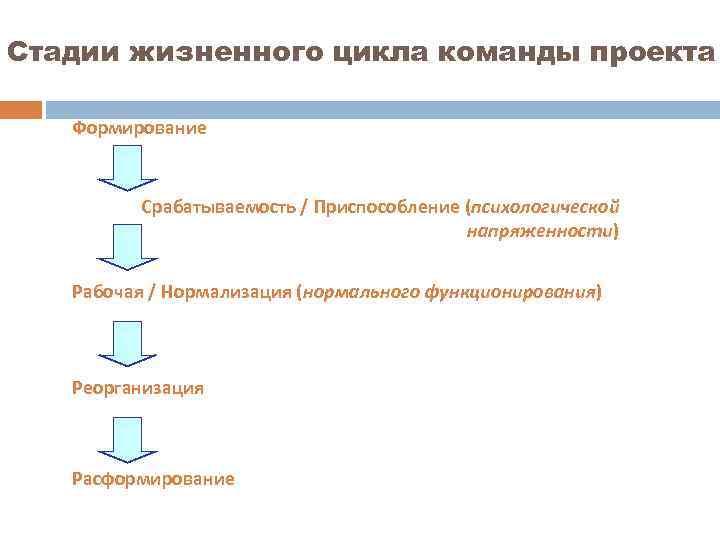 Стадии жизненного цикла команды проекта Формирование Срабатываемость / Приспособление (психологической напряженности) Рабочая / Нормализация