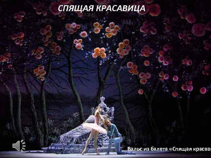 СПЯЩАЯ КРАСАВИЦА Вальс из балета «Спящая красави