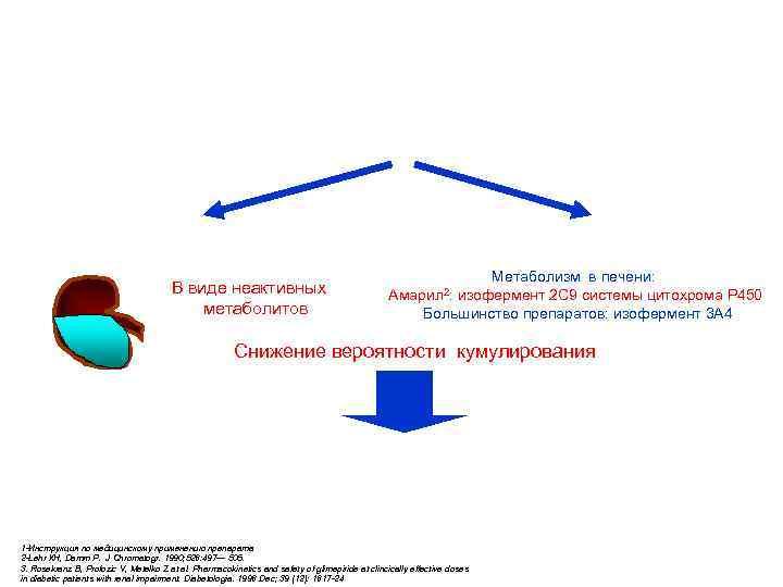 Фармакокинетика Амарила: оптимальный баланс между почечной и печеночной экскрецией Двойной путь выведения Амарила 1: