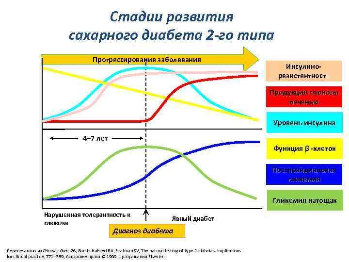 Стадии развития сахарного диабета 2 -го типа Прогрессирование заболевания Инсулинорезистентность Продукция глюкозы печенью Уровень