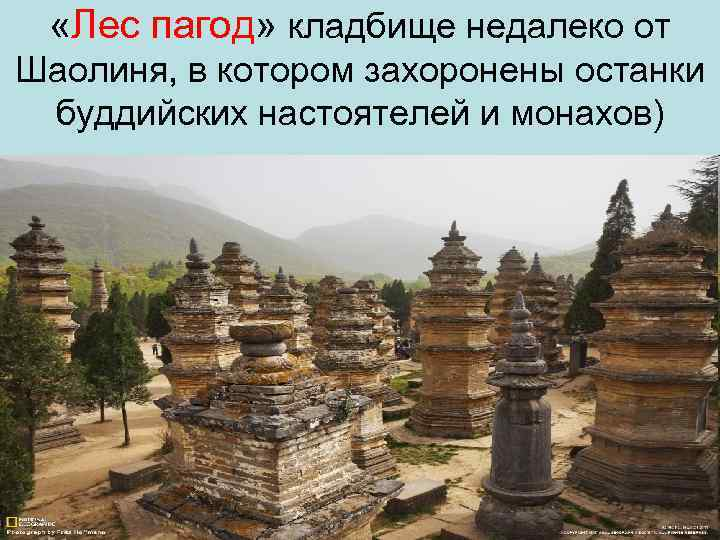 «Лес пагод» кладбище недалеко от Шаолиня, в котором захоронены останки буддийских настоятелей и
