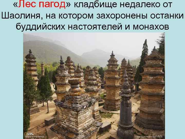 «Лес пагод» кладбище недалеко от Шаолиня, на котором захоронены останки буддийских настоятелей и