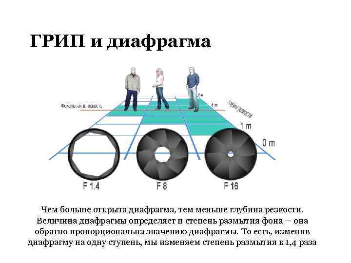 тот от чего зависит грип в фотографии новости россии