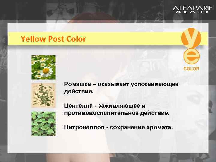 Yellow Post Color Ромашка – оказывает успокаивающее действие. Центелла - заживляющее и противовоспалительное действие.