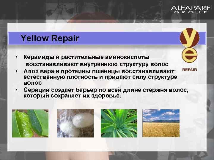 Yellow Repair • Керамиды и растительные аминокислоты восстанавливают внутреннюю структуру волос • Алоэ вера