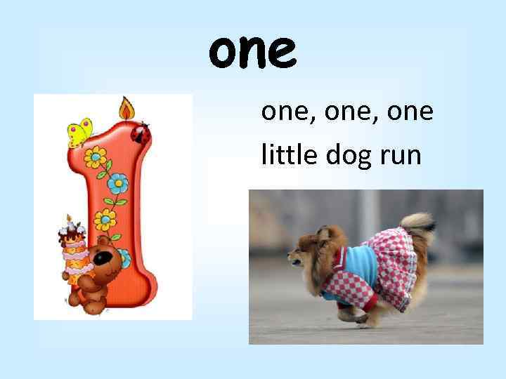 one one, one little dog run
