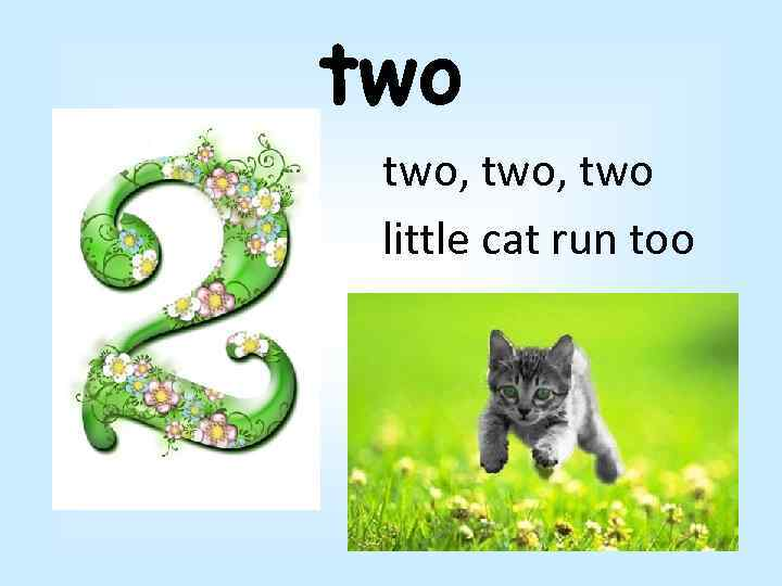 two two, two little cat run too