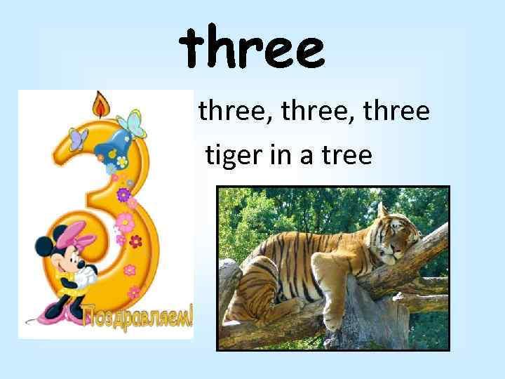 three, three tiger in a tree