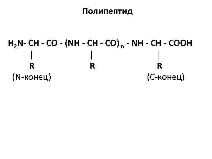 Полипептид H 2 N- СН - СО - (NН - СО) n - NН