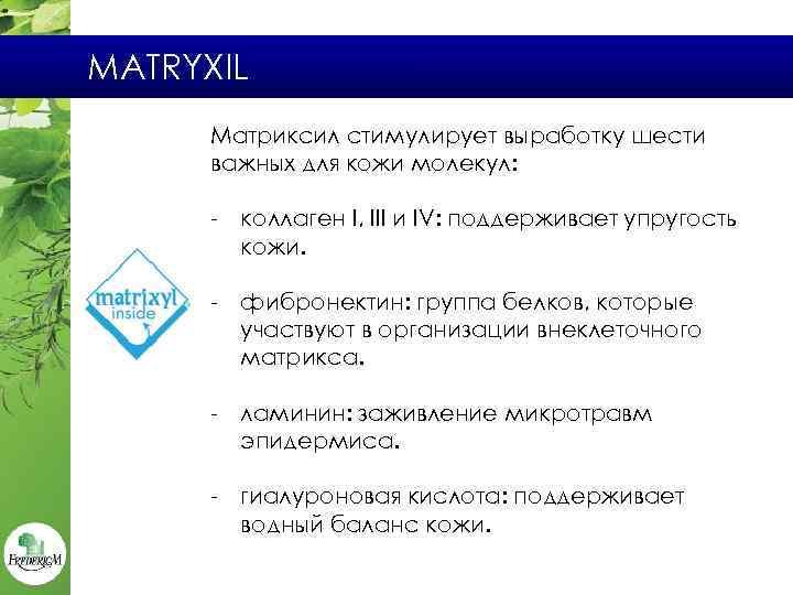 MATRYXIL Матриксил стимулирует выработку шести важных для кожи молекул: - коллаген I, III и